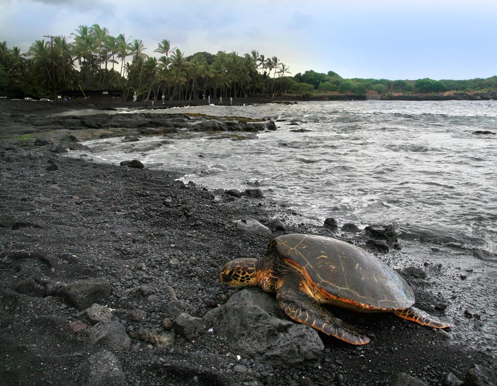 Пляж Пуналу
