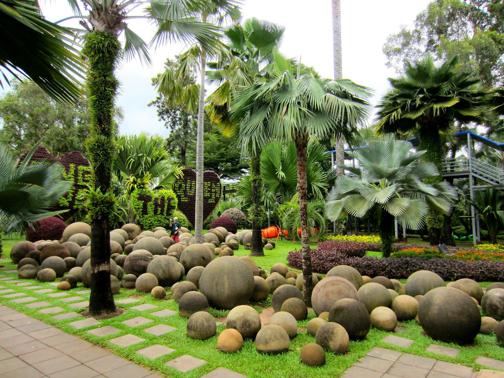 Пальмы в Нонг Нуч