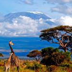 Гора Килиманджаро, Танзания