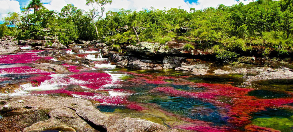 Река Пяти Цветов