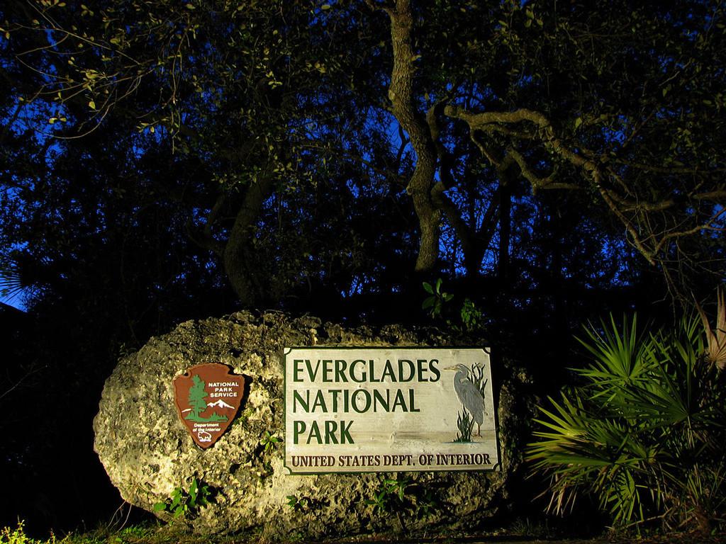 Национальный парк Эверглейдс в США