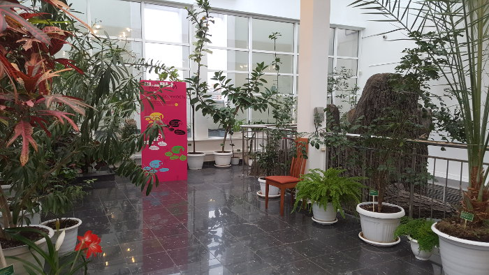 Москва, Россия, музей, Дарвиновский, дети, ребенок, сходить