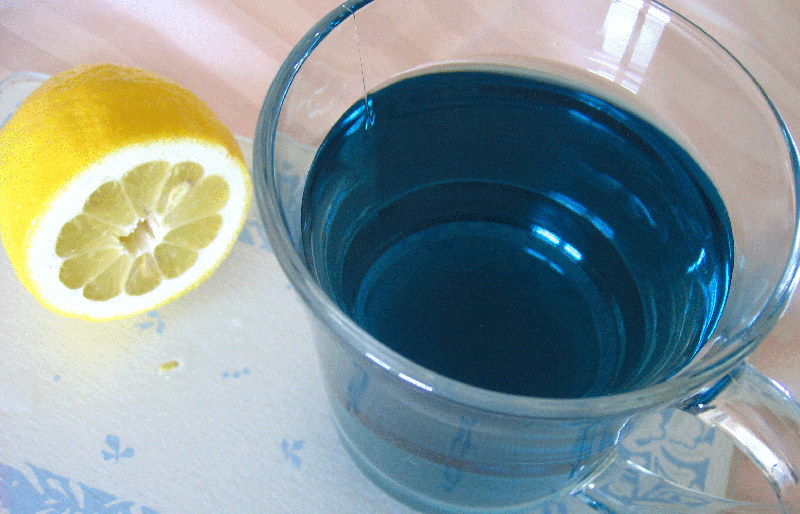 синий чай из тайланда название
