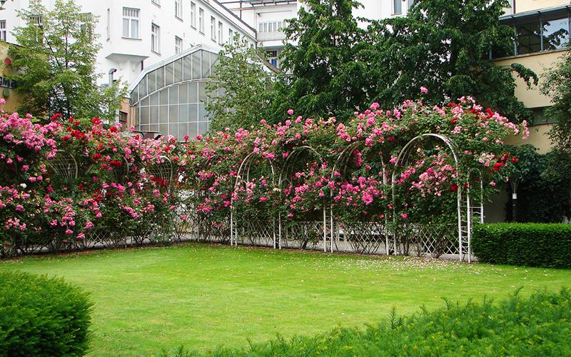 Францисканский сад, Прага