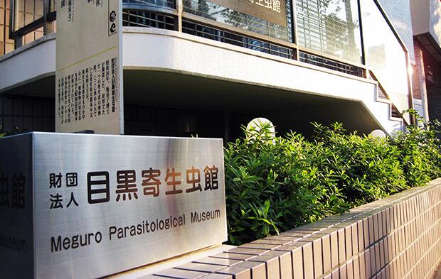 Паразитологический музей Мегуро