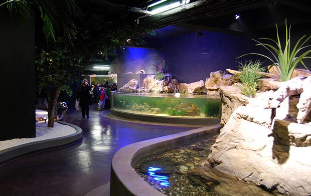 Аквариум Turkuza Zoo
