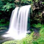 Как добраться до водопадов Сочи: 7 водопадов самостоятельно, карта