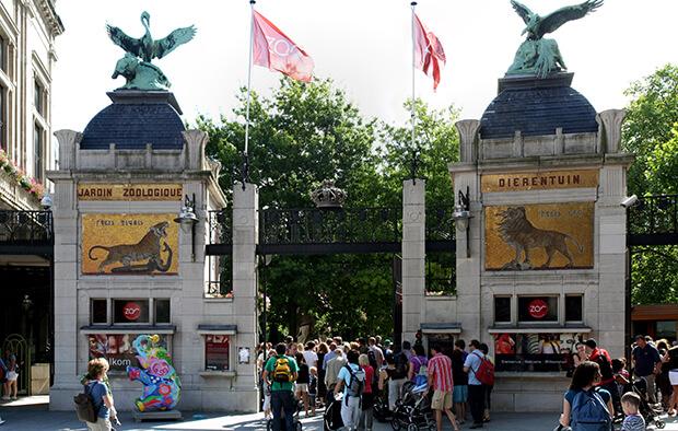 Городской зоопарк Антверпена