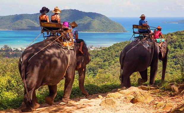 Сафари на слонах Пхукет