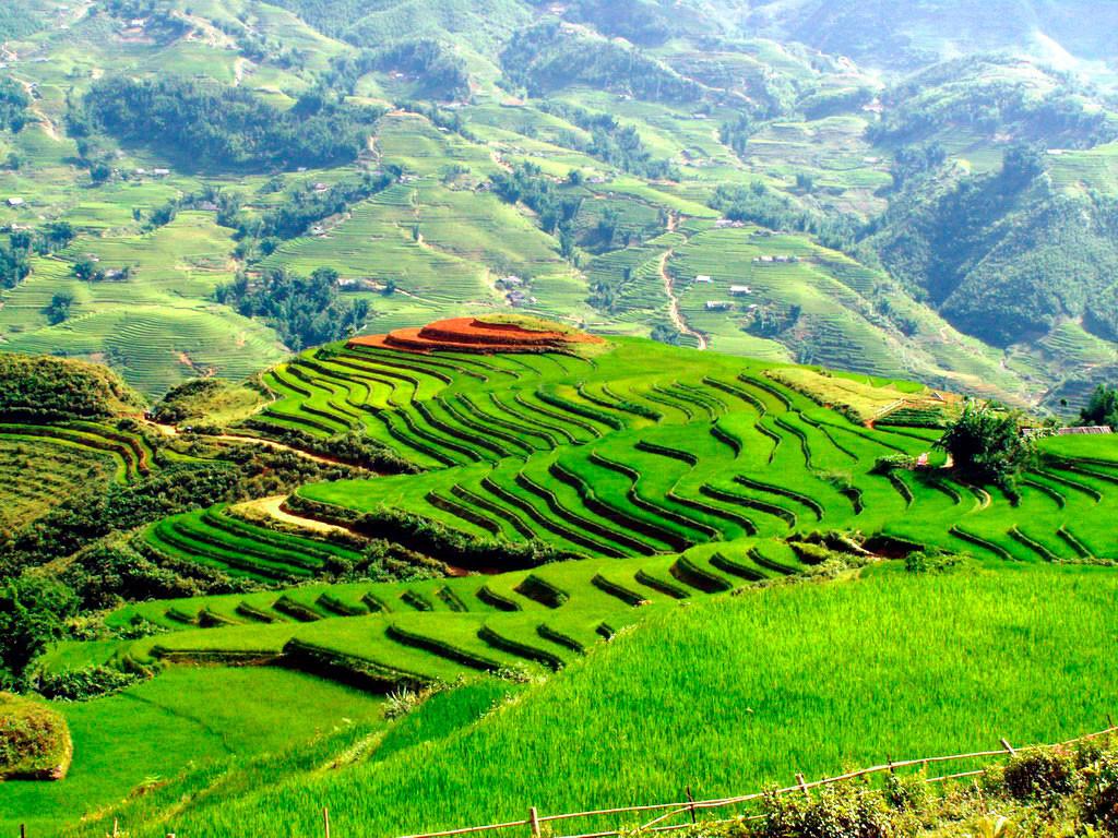Картинки по запросу вьетнам