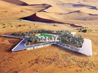 В ОАЭ может появиться уникальный курорт