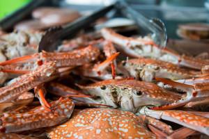Морепродукты в Паттайе: обзор, цены