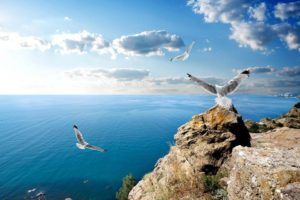 Отдых в Крыму — санатории и пансионаты всё включено