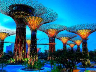Что посмотреть в Сингапуре за 3 дня – 11 самых интересных мест
