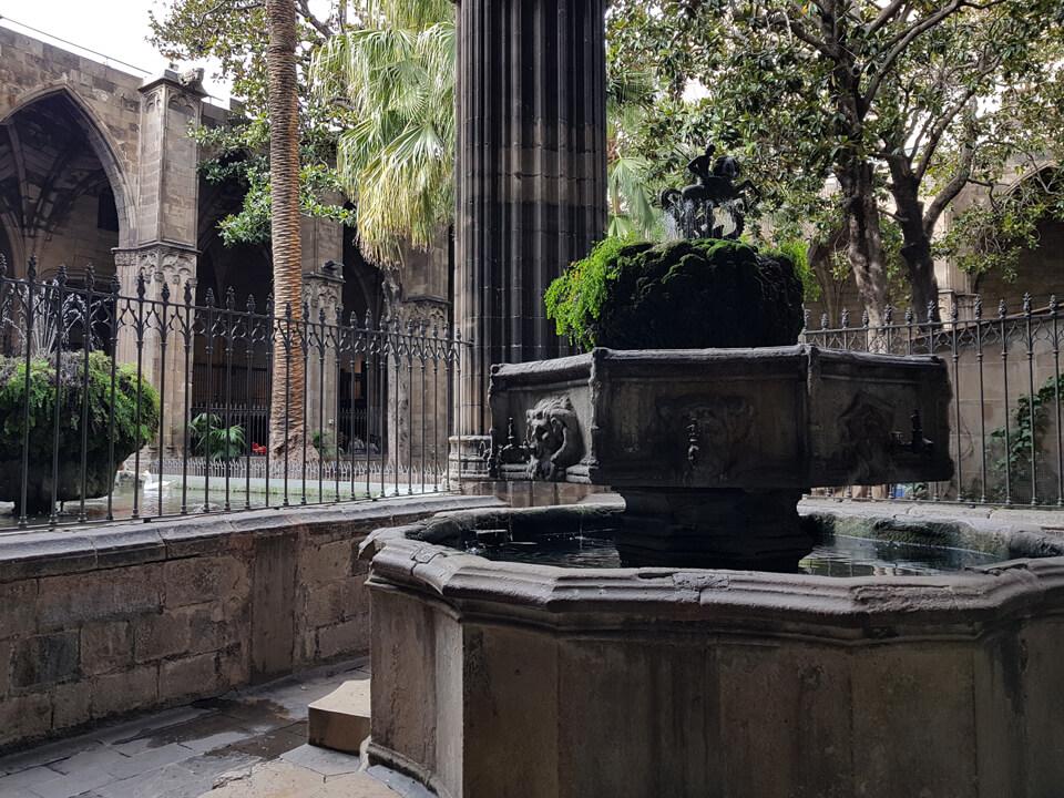 Кафедральный собор Барселоны, внутренний двоик