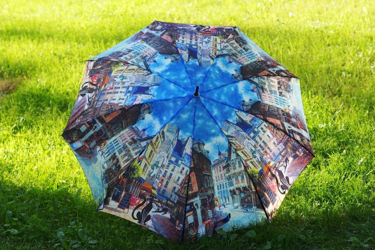 Зонт, Санкт-Петербург