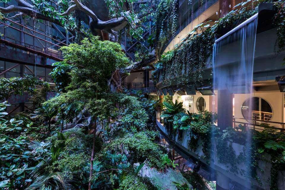 Ботанический сад «Зелёная планета», Дубай
