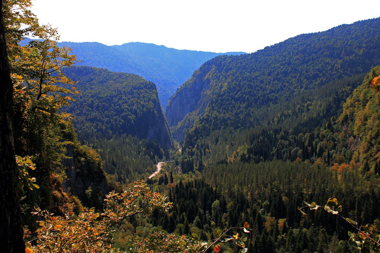 Рицинский реликтовый национальный парк, Абхазия